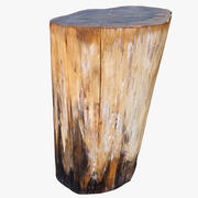 Tree Stump 12 3d model
