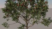 Apple Tree 3d 모델 3d model