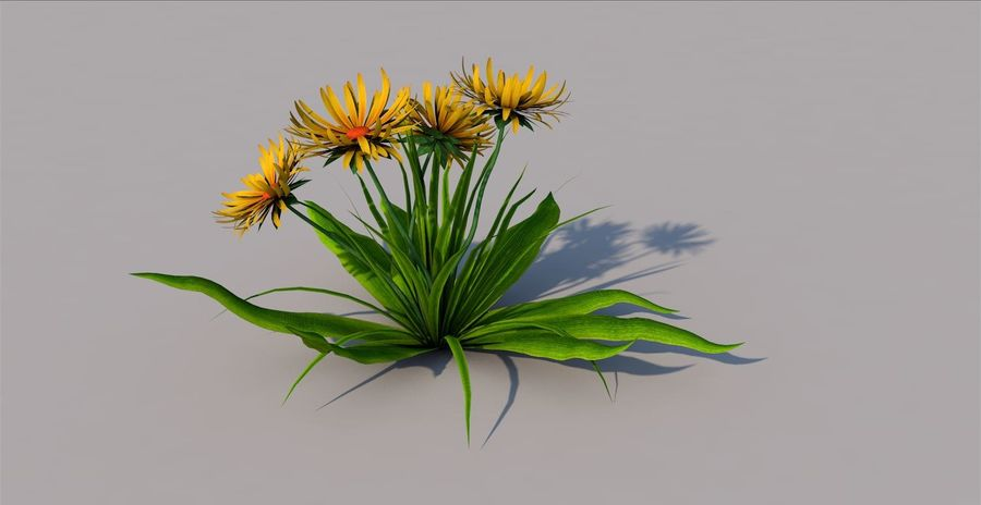 Одуванчик Желтый цветок royalty-free 3d model - Preview no. 2