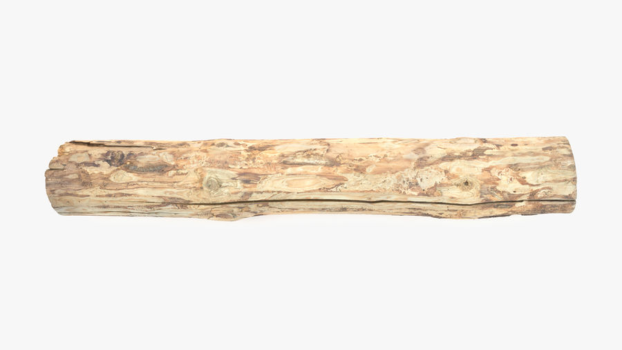 Debarked Pine Log royalty-free 3d model - Preview no. 8