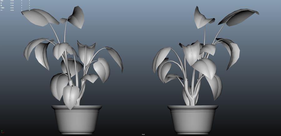 cartoon pottedPlant royalty-free 3d model - Preview no. 2