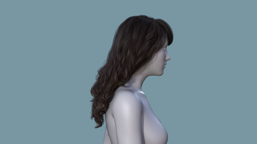 Realistic Female Polygon Long Hair 19 royalty-free 3d model - Preview no. 5