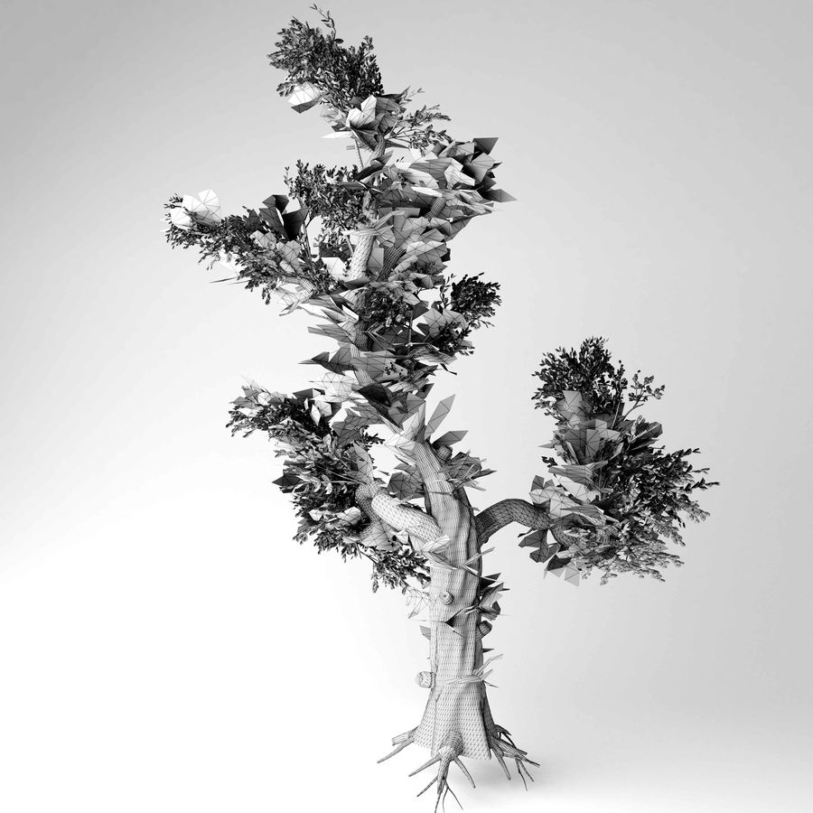 Honey tree royalty-free 3d model - Preview no. 5