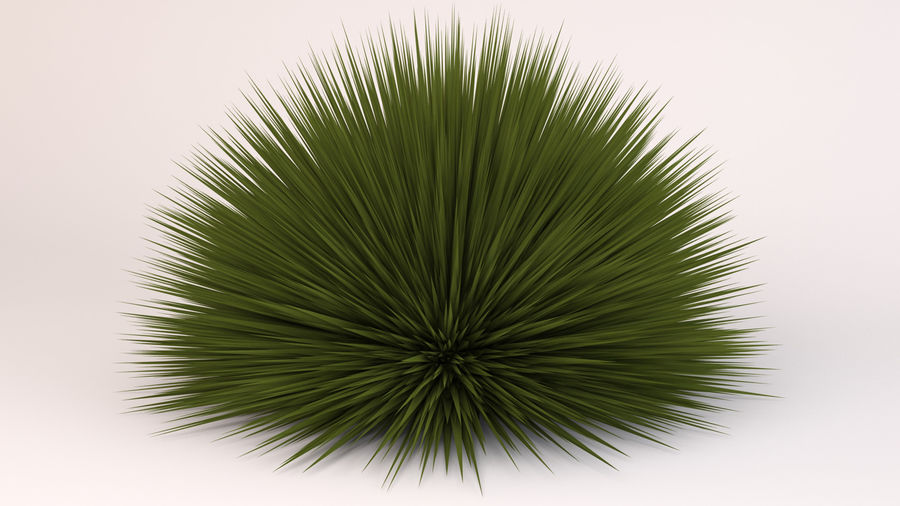 Deer Grass royalty-free 3d model - Preview no. 7