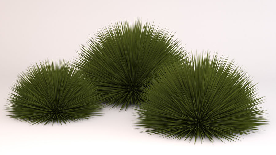 Deer Grass royalty-free 3d model - Preview no. 4