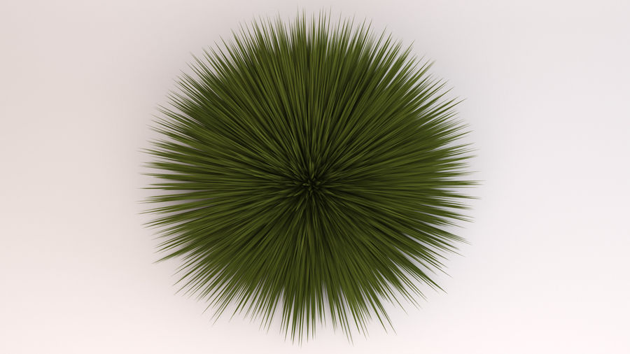 Deer Grass royalty-free 3d model - Preview no. 5