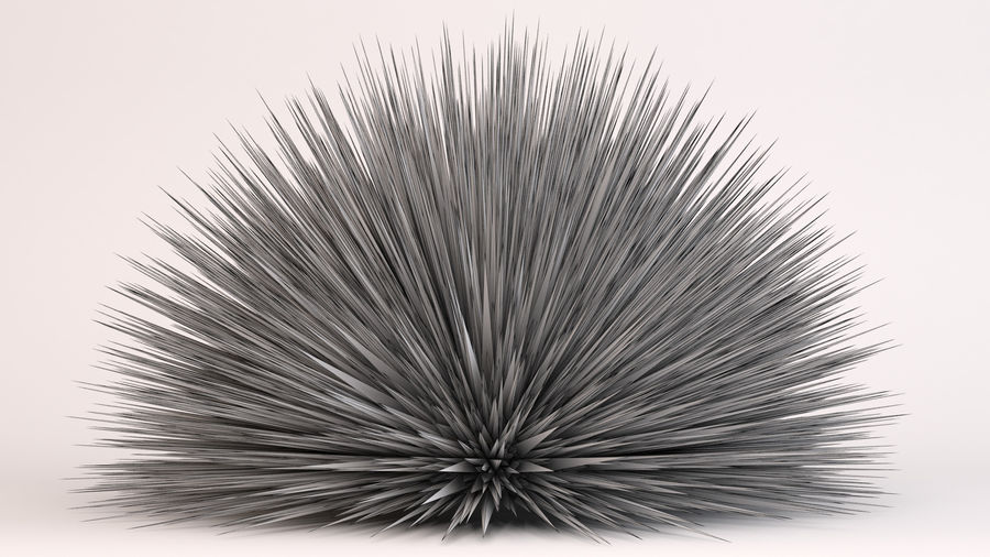 Deer Grass royalty-free 3d model - Preview no. 8