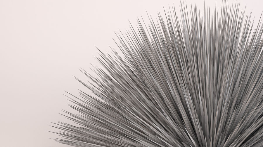 Deer Grass royalty-free 3d model - Preview no. 9