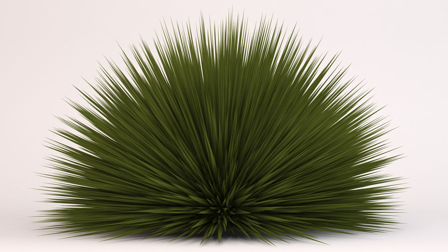 Deer Grass royalty-free 3d model - Preview no. 3