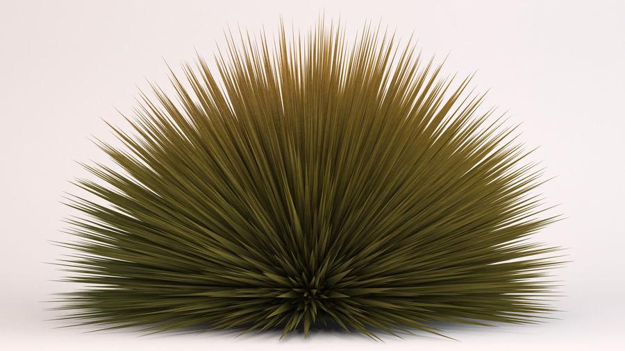 Prairie Fire Grass royalty-free 3d model - Preview no. 3
