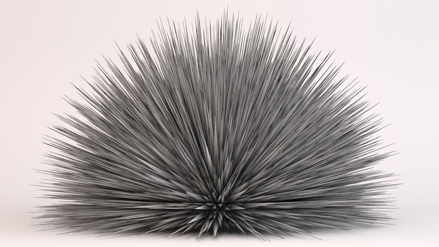 Prairie Fire Grass royalty-free 3d model - Preview no. 8
