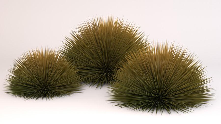 Prairie Fire Grass royalty-free 3d model - Preview no. 4
