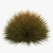 Prairie Fire Grass 3d model