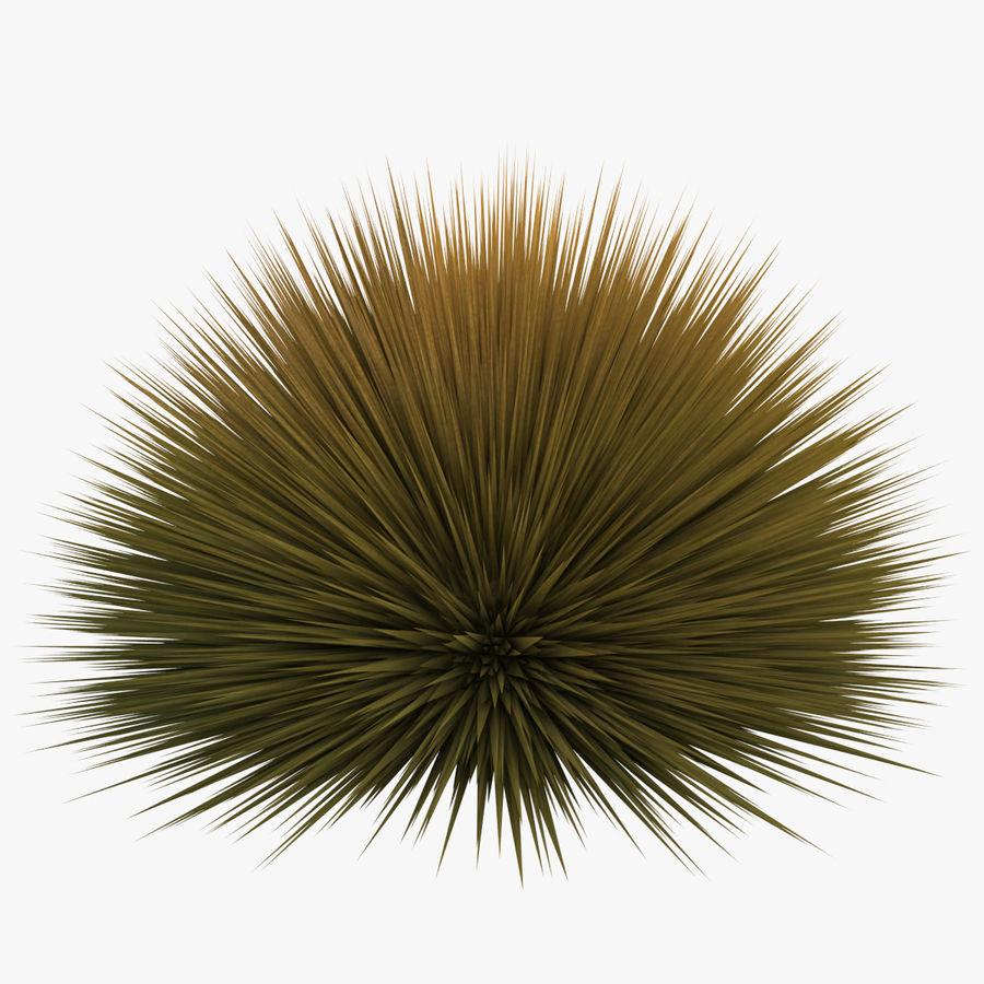 Prairie Fire Grass royalty-free 3d model - Preview no. 1