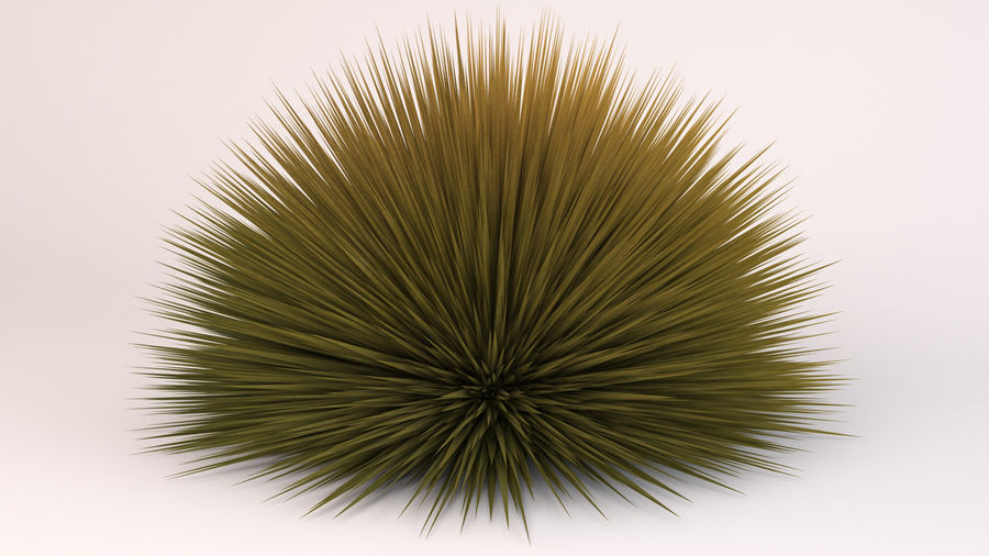 Prairie Fire Grass royalty-free 3d model - Preview no. 7