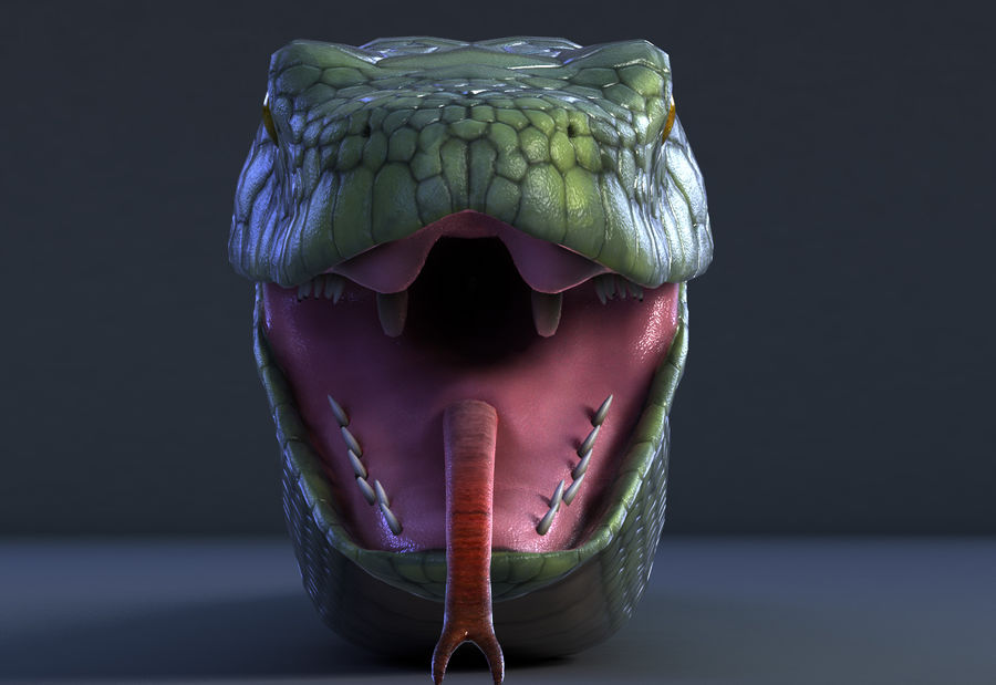 snake green bamboo snake reptile animal boa constrictor royalty-free 3d model - Preview no. 3