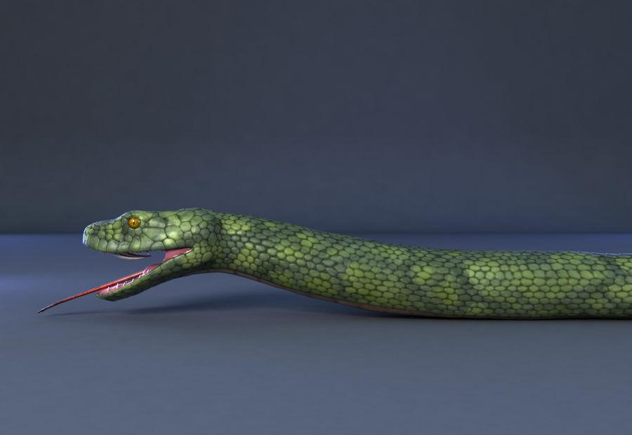 snake green bamboo snake reptile animal boa constrictor royalty-free 3d model - Preview no. 5