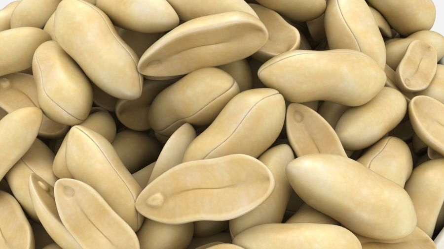 Peanuts in Bowl royalty-free 3d model - Preview no. 8