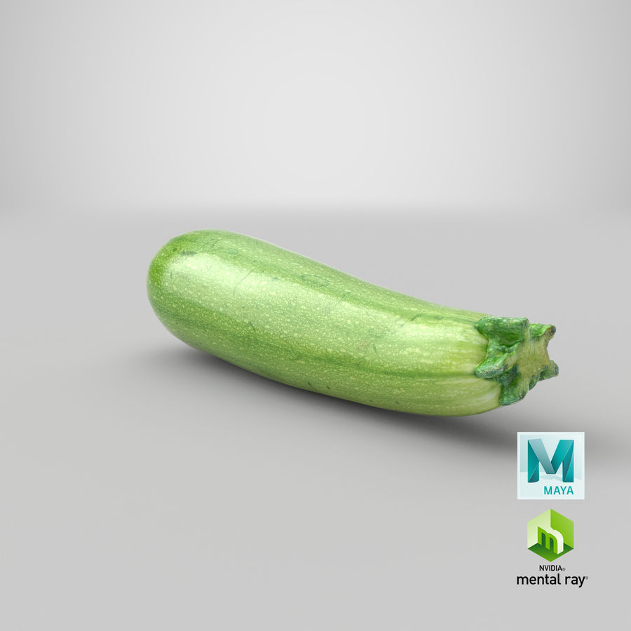 Zucchini Cousa Squash 04 royalty-free 3d model - Preview no. 25