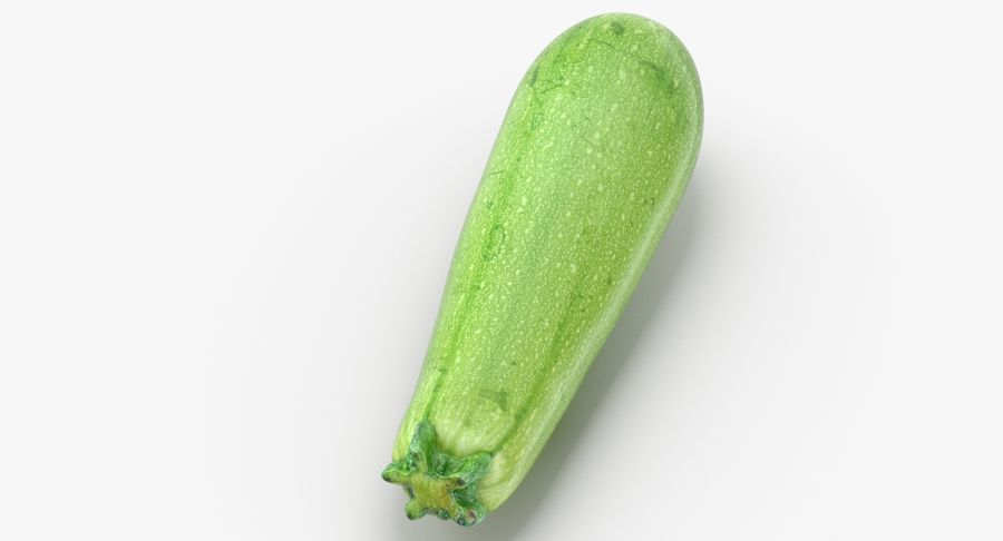 Zucchini Cousa Squash 04 royalty-free 3d model - Preview no. 6