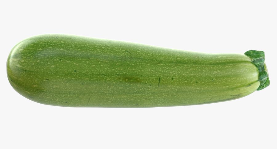 Zucchini Cousa Squash 04 royalty-free 3d model - Preview no. 8