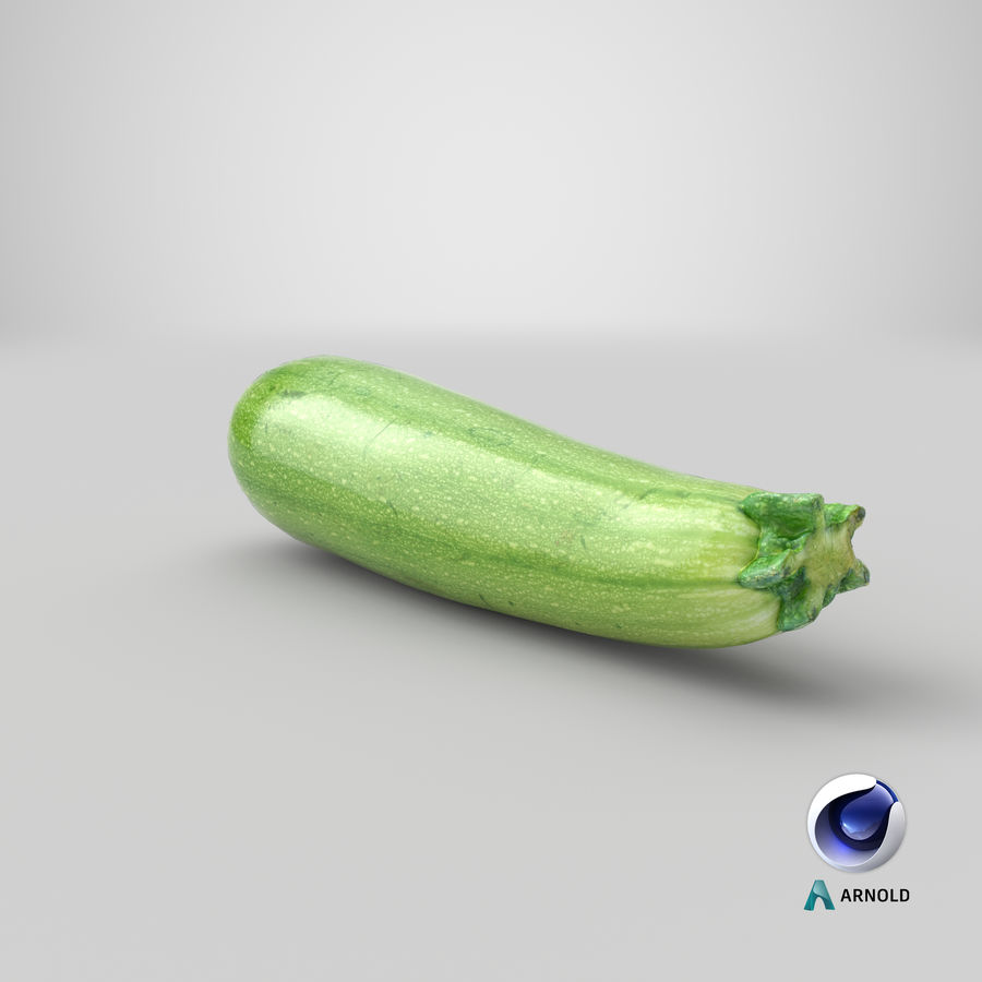 Zucchini Cousa Squash 04 royalty-free 3d model - Preview no. 20