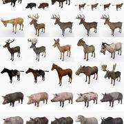 Animals Mega Collection 3d model