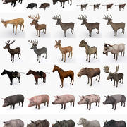 Animals Mega Collection 3d model