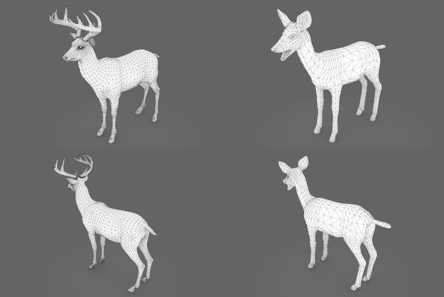 Collezione Animals Mega royalty-free 3d model - Preview no. 6