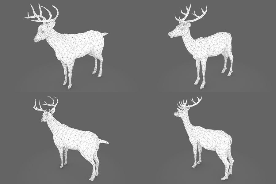 Collezione Animals Mega royalty-free 3d model - Preview no. 5