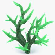 Seriatopora Coral 3d model