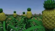 Ananas Bitkisi 3d model