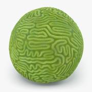 Brain Polyp Coral 3d model