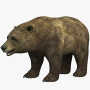 медведь 3d model