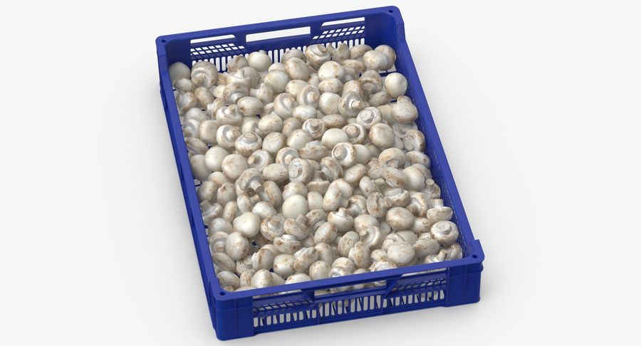 Nachernte-Obst- und Gemüse Behälter mit weißen Knopf-Pilzen royalty-free 3d model - Preview no. 3