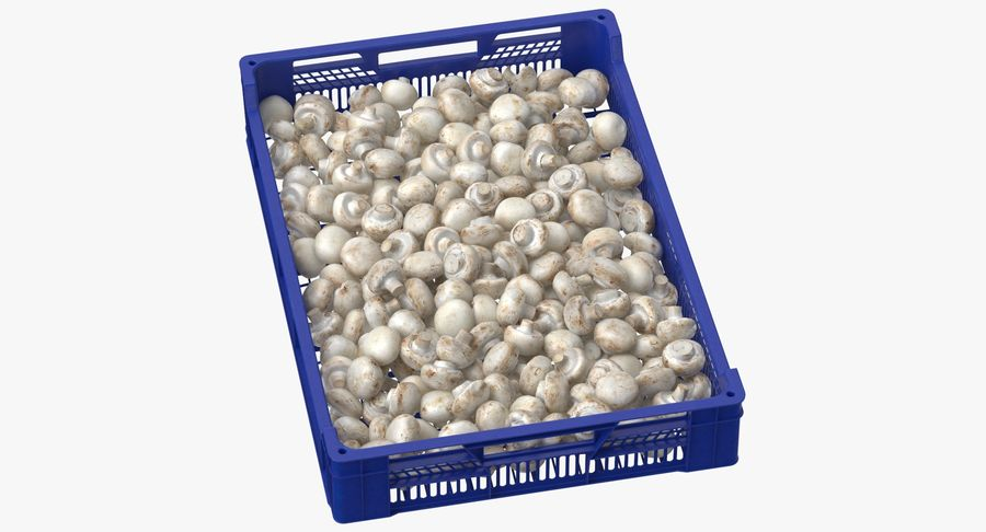 Nachernte-Obst- und Gemüse Behälter mit weißen Knopf-Pilzen royalty-free 3d model - Preview no. 2