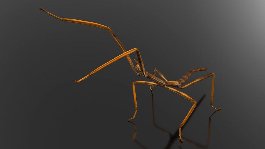 Bâton d'attaque Brown Attack Pose royalty-free 3d model - Preview no. 2