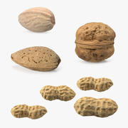 Nuts Collection 5 3d model