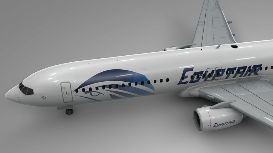 EGYPTAIR Boeing 737-800 L435 royalty-free 3d model - Preview no. 11