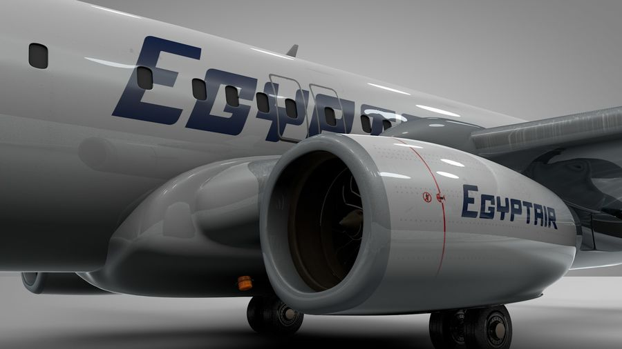 EGYPTAIR Boeing 737-800 L435 royalty-free 3d model - Preview no. 8