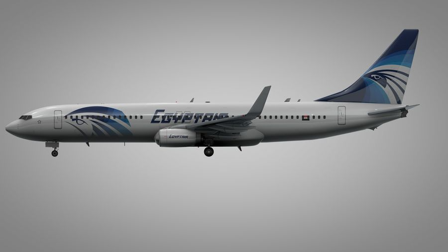 EGYPTAIR Boeing 737-800 L435 royalty-free 3d model - Preview no. 9