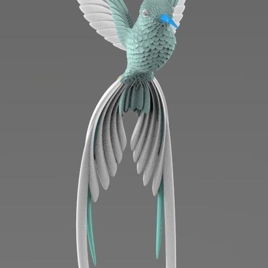 colibri royalty-free 3d model - Preview no. 13