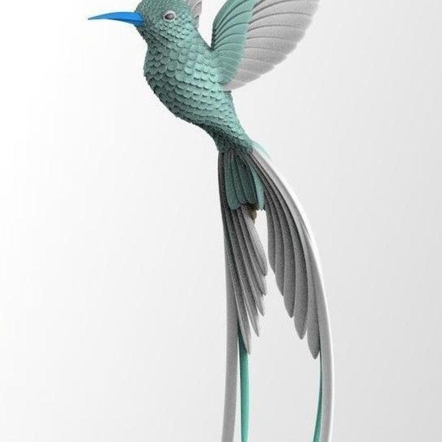 colibri royalty-free 3d model - Preview no. 14