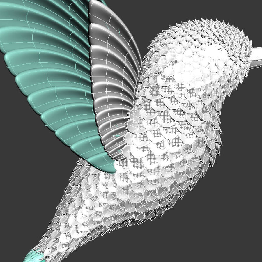 colibri royalty-free 3d model - Preview no. 7