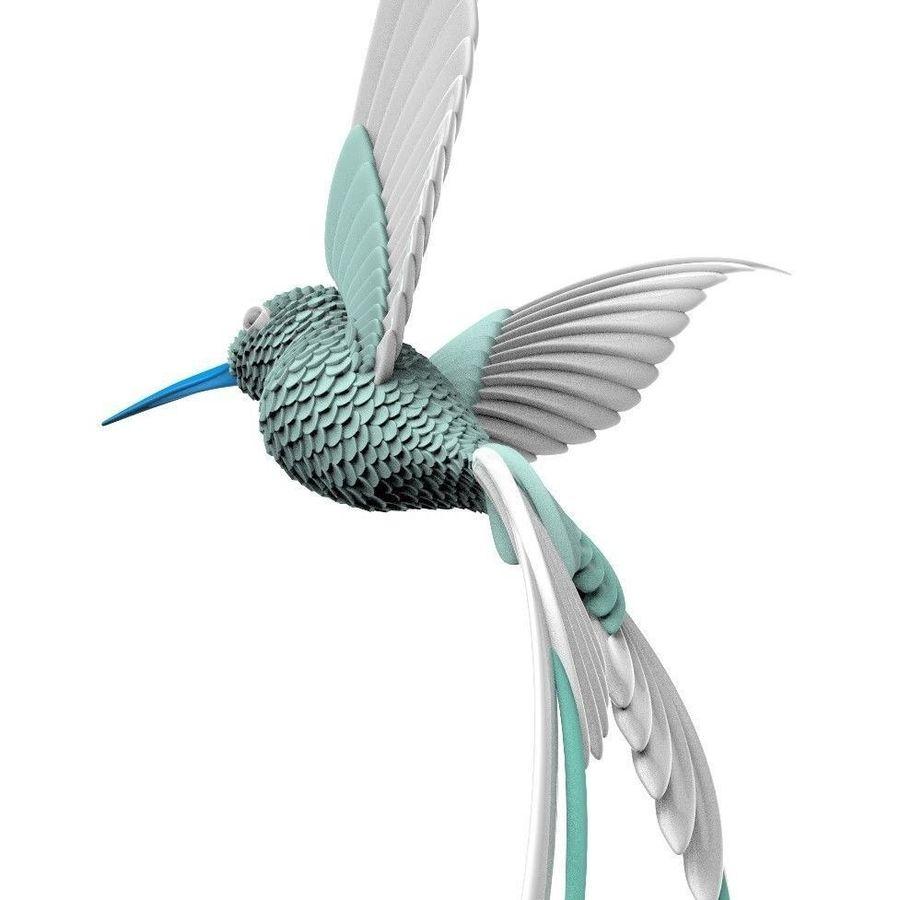 colibri royalty-free 3d model - Preview no. 6