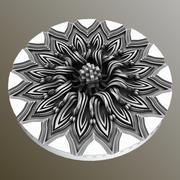 Disk Decoration 3d model
