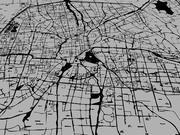 Городская векторная карта города 3d model
