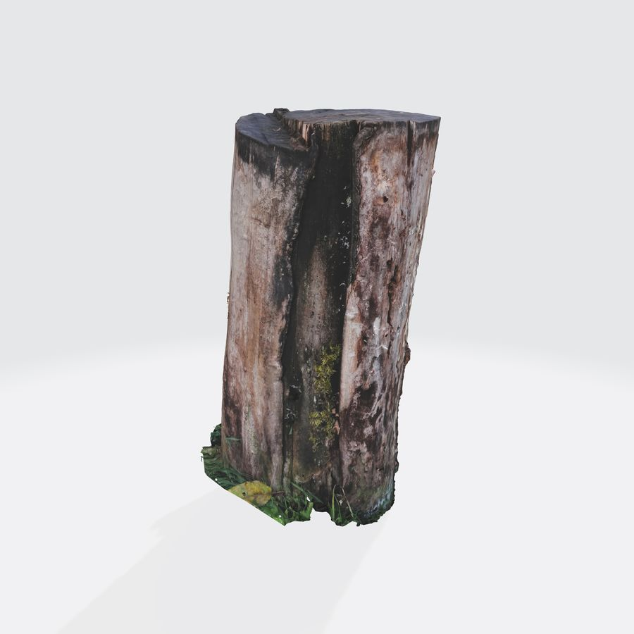 Treestump without bark royalty-free 3d model - Preview no. 1