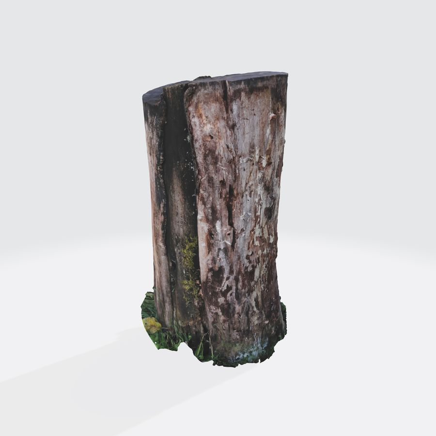 Treestump without bark royalty-free 3d model - Preview no. 2