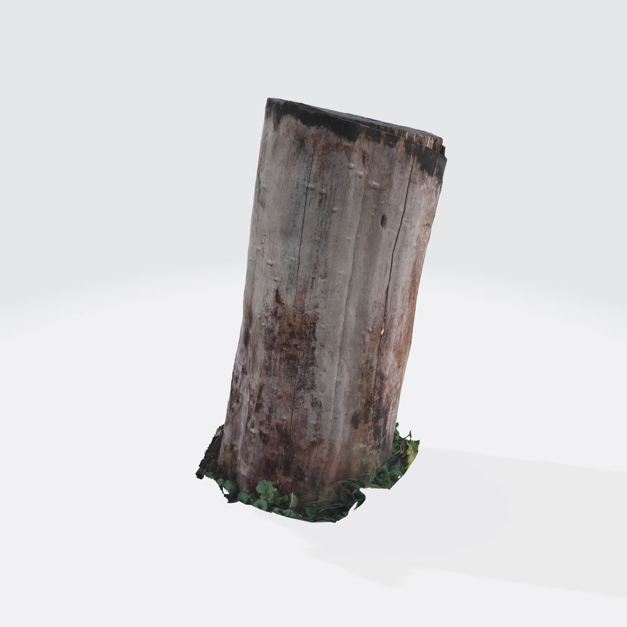 Treestump without bark royalty-free 3d model - Preview no. 8